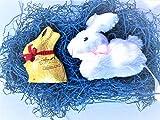 Ricevi Gold Bunny Latte 50g + Peluche Coniglietto Bianco Misure cm 12x13x9 Il regalo di cioccolato perfetto per tutti i bambini, ma anche per i grandi! Il cacao più pregiato proveniente dalle migliori piantagioni del mondo mescolato agli ingredienti ...