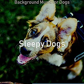 Background Music for Dogs