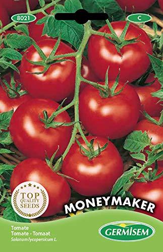 Germisem Moneymacker Graines de Tomate 1.5 g EC8021 Multicolore