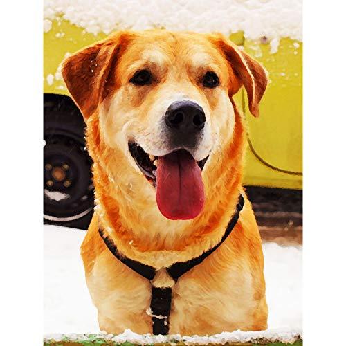 Lazodaer - Kit de pintura de diamante 5D por número, taladro redondo completo, pintura de bordado de diamante, manualidades para decoración de pared del hogar, perro lindo 30 x 39,9 cm
