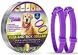 Tratamiento-de-pulgas-para-Perros, Collar-antipulgas-Perros Ajustable, 8 Meses de...