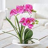 DWANCE Kunstblumen Schmetterling Orchidee im Topf Künstliche Blumen Deko Balkon Pflanze im Topf für Tischdeko Zimmer Balkon Garten Hochzeit Party Dekoration Lila - 5