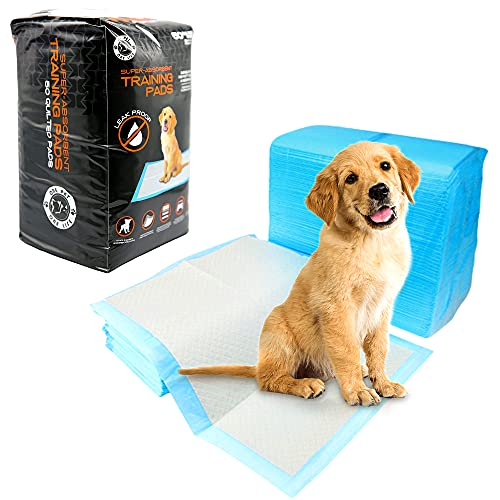 FOB Empapadores Pack 50 Unidades Desechables, (Tamaño Regular) Toallitas higiénicas Alfombrilla de adiestramiento para Mascotas. Súper Absorbente,Resitente,5 Capas.