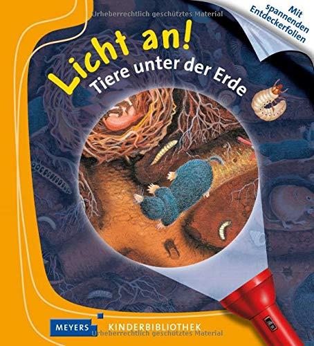Tiere unter der Erde: Licht an! (Licht an! Die Reihe mit der magischen Taschenlampe)