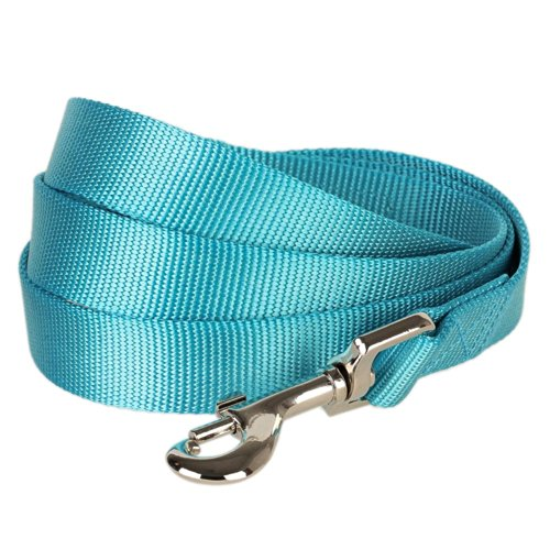 "Blueberry Pet Essentials 19 Colors Durable Classic Dog Leash 5 ft x 3/4"", Medium Turquoise, Medium, Basic Nylon Leashes for Dogs"