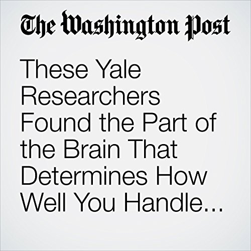 These Yale Researchers Found the Part of the Brain That Determines How Well You Handle Stress audiobook cover art