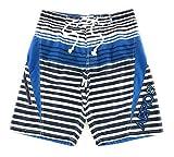Aeropostale Men's Board Shorts Swim Suit 34 White Stripe 7181