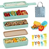 Bento Box for Kids with Silicone Cupcake Baking Cups & Food Picks for Kids,3-In-1 Compartment Lunch Box, Wheat Straw, Eco-Friendly Bento Lunch Box with Dividers Meal Prep Containers for Kids ( Green)