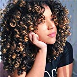 Short Curly Brown Synthetic Hair Wigs for Black Women Andromeda Afro Kinky Curly Fiber Hair Wig with Bangs for African American Black Women (T30)