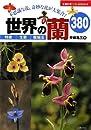 世界の蘭380―不思議な花、奇妙な花が大集合!
