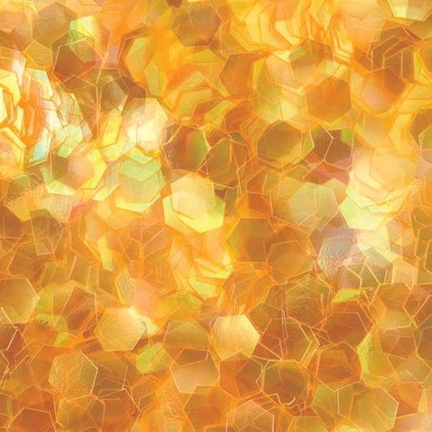 排泄物故意に専門用語ピカエース ネイル用パウダー 六角オーロラG 1mm #302 オレンジ 0.5g