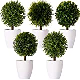 FagusHome 8' Artificial Plants Potted Artificial Boxwood Topiary Tree Artificial Ball Shaped Tree Fake Fresh Green Grass Flower in White Plastic Pot for Home Décor – Set of 5 (B)