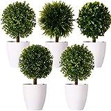FagusHome 20cm Alto Plantas Artificiales en Maceta 5 Piezas árbol en Forma de Bola en Maceta boj Artificial plástico para decoración (B)