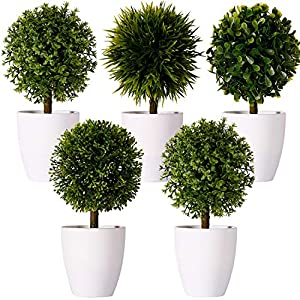 """Silk Flower Arrangements FagusHome 8"""" Artificial Plants Potted Artificial Boxwood Topiary Tree Artificial Ball Shaped Tree Fake Fresh Green Grass Flower in White Plastic Pot for Home Décor – Set of 5 (B)"""