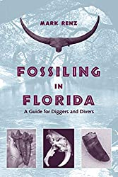Fossil Collecting in Florida