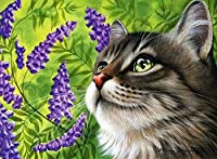 Diy 数字 油絵 塗り絵 キット ラベンダー猫 40X50Cm 塗り絵 手塗り Diy絵 デジタル油絵 ホーム オフィス装飾