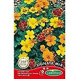 Germisem Signata Mixed Semillas de Caléndula 0.5 g...