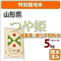 ≪特別栽培米≫山形県産「つや姫」5kg