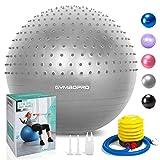 GYMBOPRO Fitness Pelota de Ejercicio,Bola de Yoga antirrebote y Antideslizante Bola de Equilibrio para Gimnasio Pilates Gimnasio de Yoga (Style 1,Plata)