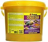 Tropical Cichlid Color Flakes - Pienso de Copos de Nieve con Beta-glucano, 1 Unidad (5 l)