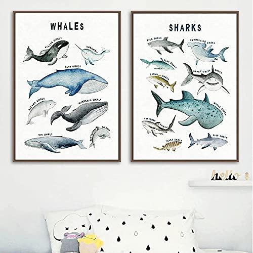 Pintura de pared 2 piezas 60x80cm Sin marco Giclee Obra de arte Tiburón ballena Animal marino Póster Arte de guardería Impresión educativa Decoración de habitación de bebé y niños