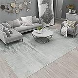 Kunsen Alfombra Salón Diseño Simple Claro Claro Gris decoración del hogar Alfombra 80X160cm