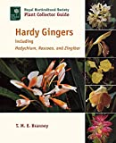 Hardy Gingers: Including Hedychium, Roscoea, and Zingiber