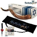 HalleluYAH Shofar From Israel – Shofar Set: 24'- 28' Half Polished Kudu Horn | Yemenite Shofar with Carry...