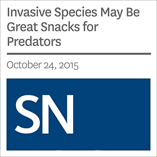 Invasive Species May Be Great Snacks for Predators                   By:                                                                                                                                 Sarah Zielinski                               Narrated by:                                                                                                                                 Mark Moran                      Length: 3 mins     Not rated yet     Overall 0.0