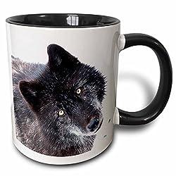 3dRose 173728_4 Rocky Mountain Gray Wolf Two Tone Mug 11 oz Black