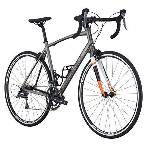 Diamondback Bicycles Diamondback Airen Sport Women's Endurance Road Bike, 48cm Frame, Silver, 48 cm/XX-Small