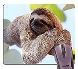 Knseva Happy Sloth Cute Mouse Pad
