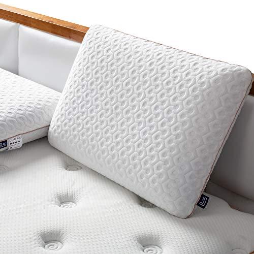 BedStory Oreiller 60x40cm Mémoire de Forme, Oreiller Cervical, Support Efficace pour Toutes Les Positions, Orthopédique à Réduire la Douleur au Cou avec Housse Antibactérienne Amovible