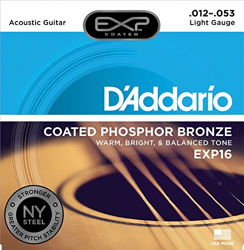 D'Addario EXP16 Coated Phosphor Bronze Acoustic Guitar Strings, Light, 12-53 – Offers a...