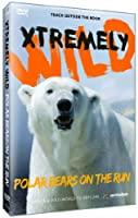 Polar Bears on the Run [DVD] [Import]