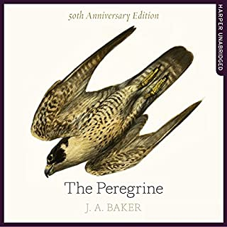 The Peregrine: 50th Anniversary Edition: Afterword by Robert Macfarlane                   By:                                                                                                                                 J. A. Baker,                                                                                        Mark Cocker - introduction,                                                                                        Robert Macfarlane - afterword,                   and others                          Narrated by:                                                                                                                                 Dugald Bruce-Lockhart                      Length: 7 hrs and 34 mins     8 ratings     Overall 4.8