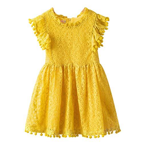 TTYAOVO meisjes kant geborduurde prinses partyjurk bloemenmeisjes bruiloft jurk voor 2-7 jaar