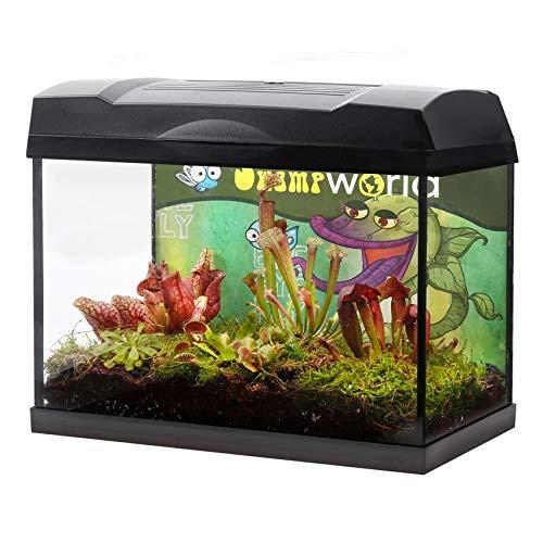 Swampworld Terrarium XL - Ökosystem aus Glas mit Beleuchtung - Inklusive 5 Verschiedene Fleischfressende Pflanze - Venusfliegenfalle, Sonnetau un Schlaufpflanzen - Inklusive Moos und Erde - 39x21x31cm