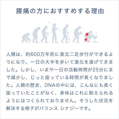 プロダクトマーケッティングサービス『バランスシナジー(150BS10)』