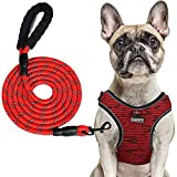 PABOBIT Dog Harness, No Pull Dog Harness and Leash Set, Reflective Adjustable Pet Vest with 5ft Dog Leash, Soft Breathable Flying Net Dog Harnessfor Medium Dogs (M Chest Girth 19.7'-23.6')