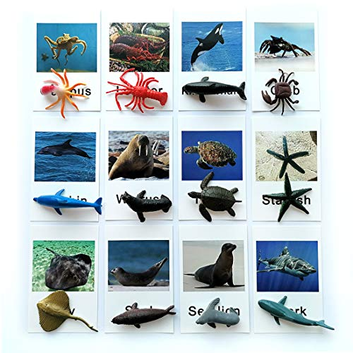 Montessori Animal Match Game Cards Marine Animal Matching Montessori...