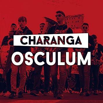 Osculum (En Directo)