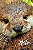 Otter Notebook: cute sea otters gift for animal lovers (blank lined journal) great for writing notes and ideas for home use or school homework / otter ... pages) perfect for anyone that loves animals