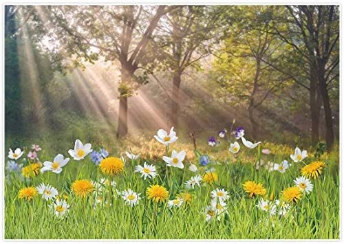 Allenjoy Spring Easter Grassland Floral Backdrop Pictures Nature Forest Scenery Tree Grass Sunshine product image