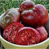 SANHOC 100 pc/Sacchetto di Colore Zucca Big Squash-Outdoor zucchine Bonsai Organic Frutta Verdura Colori Mix-pianta per la casa Giardino di impianto: 8