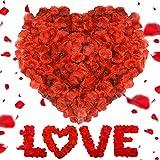 Petali di Rosa, Artificiali Petali di Rosa, 3000 Pezzi Petali di Fiori Finti, Rosa in Seta Rossa, Confetti per Festa Romantica per Matrimonio San Valentine e Fidanzamento, Proposta di Matrimonio
