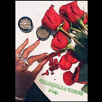 Marijuana Roses