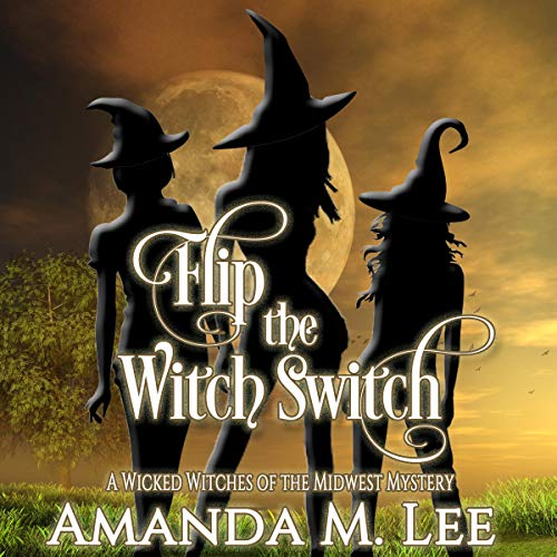 Flip the Witch Switch cover art