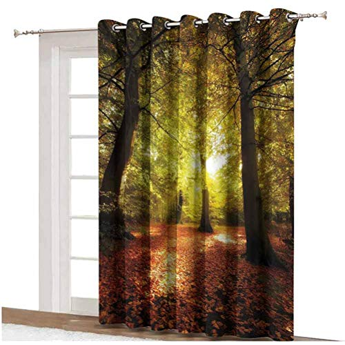 Fall Sliding Door Curtain Blurry Hazy View of Forest Defoliation Mysterious Dramatic Dreamlike View Thermal Backing Sliding Glass Door Drape ,Single Panel 100x84 inch,for Sliding Door Pale Green Red B
