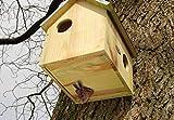 Eichhörnchenhaus aus Holz, FSC, 100 % Zinkdach